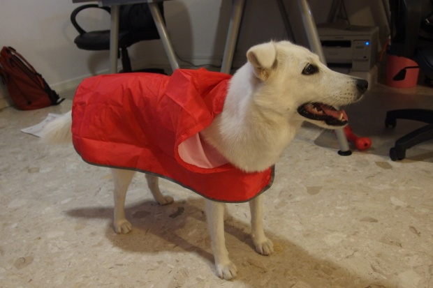 Macy in raincoat 2